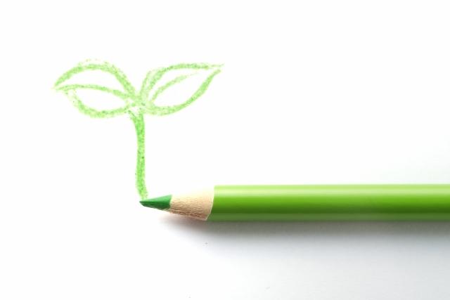 緑鉛筆で芽を描く
