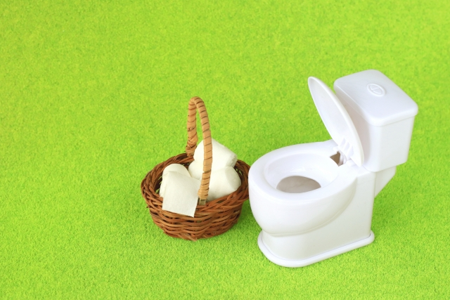 小さなトイレ