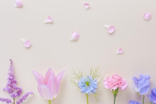 パステルカラーのお花