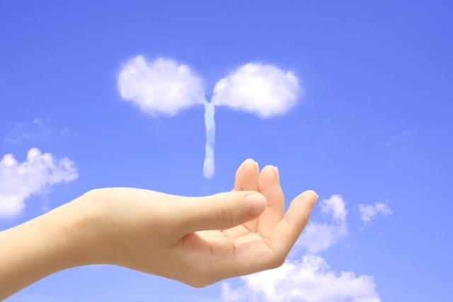 雲でできた双葉