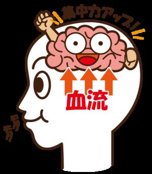 脳への血流