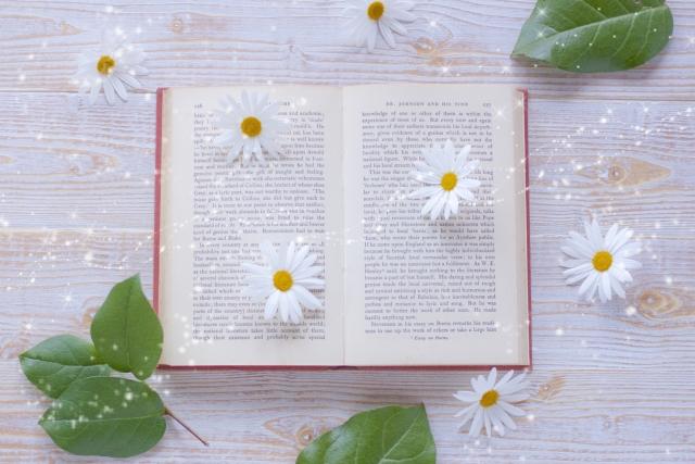 本の上に白いお花