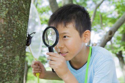 「子供 自由研究」アイキャッチ画像