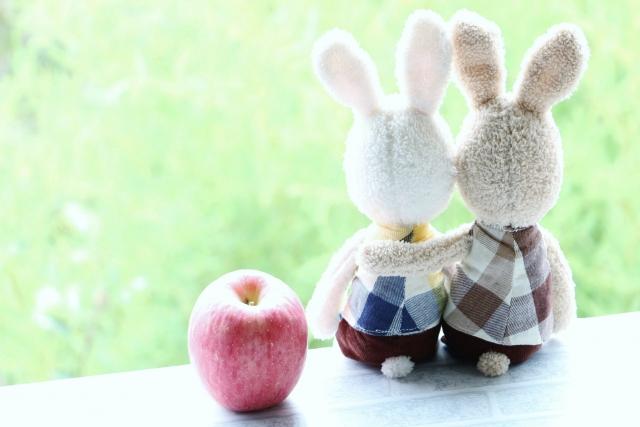 仲良しうさぎとりんご