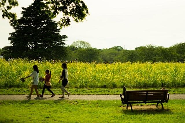 花畑の前を歩く数名