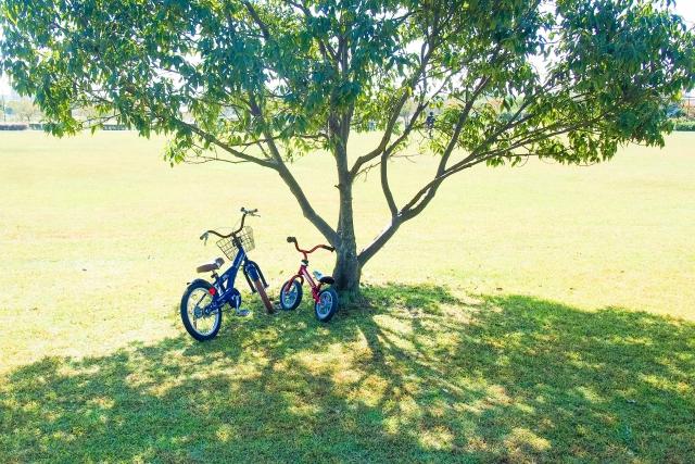 公園に置かれた自転車